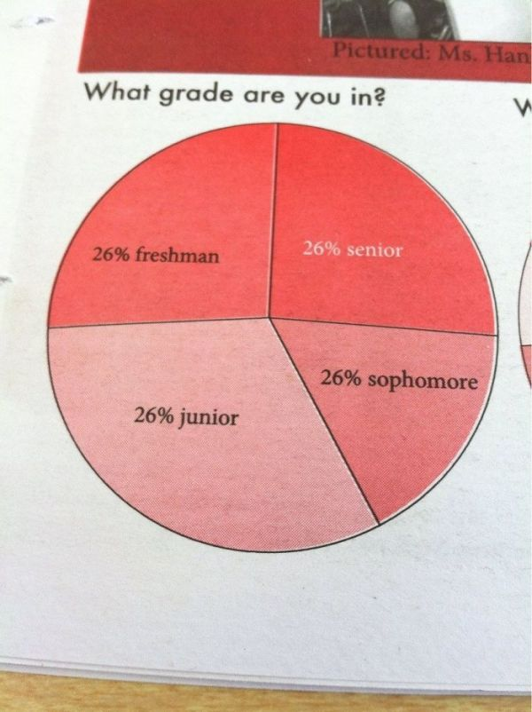 The Pie Graph In My School's Newspaper