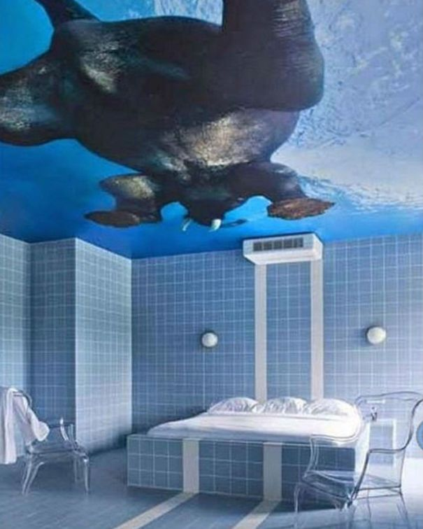 Before You Get Hung Up On The Elephant, Let Your Mind Wander To What Kind Of Activities Require A Fully Tiled Bedroom