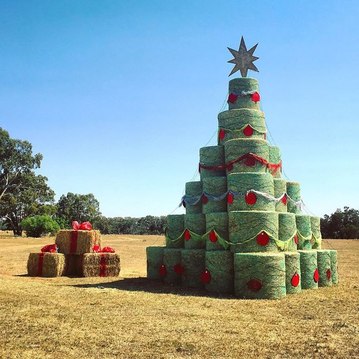 This Farmer Made A Very Specific Christmas Tree