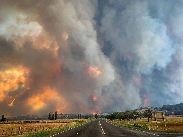 This Is A Pyrocumulus Cloud Produced By Smoke From The Australian Bushfires. It's 12km High. It Produces Its Own Thunderstorms, Fire Tornadoes And 100km/H Winds