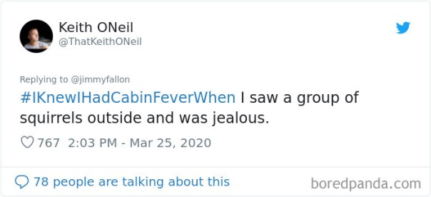 Funny-Knew-I-Had-Cabin-Fever-When-Tweets-Jimmy-Fallon