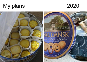 """""""My Plans Vs. 2020"""" Memes Show People's Shattered Hopes To Have A Good 2020"""