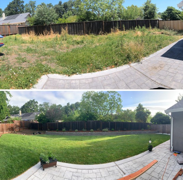 Before and after of my marathon of a backyard project