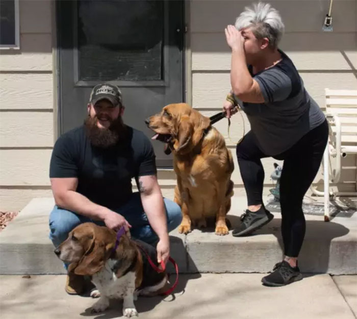 Rescue Dog That Never Had His Own Yard Gets A Surprise When His New Parents Build Him One