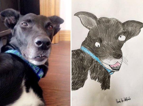 Funny-Pet-Portraits-Charity-Hercule-Van-Wolfwinkle