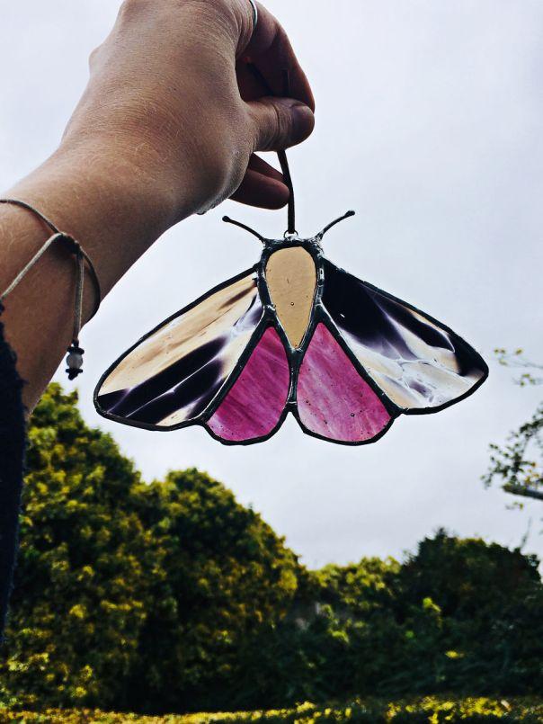 Spotty Moth