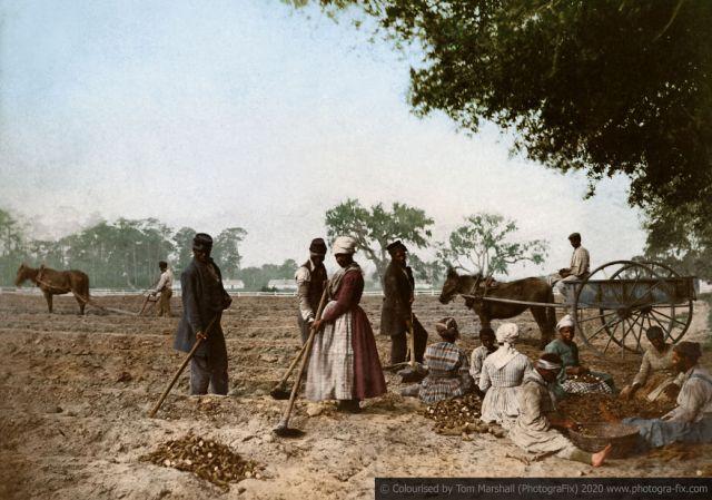 Kolorizirane fotografije kao prikaz strave robova u SAD-u 5