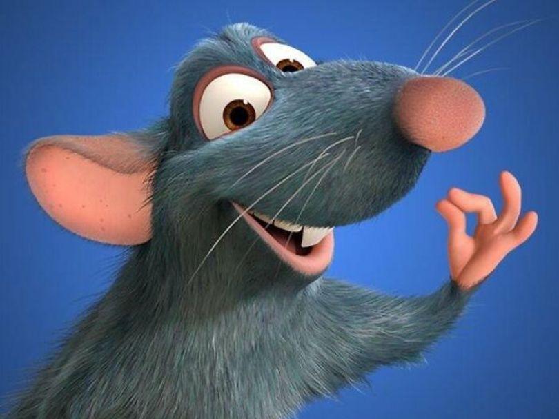 De acordo com Brad Bird, diretor de Ratatouille (2007), ele escolheu Patton Oswalt para dar voz a Remy depois de ouvir uma de suas rotinas de levantar-se sobre comida