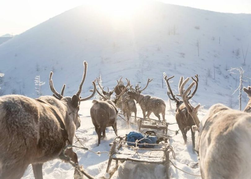 Photographer Alexey Vasiliev shows the daily life of Russias coldest region 60375572990c7  880 - Qual a menor temperatura já registrada na Terra?