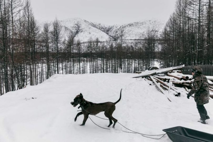 Photographer Alexey Vasiliev shows the daily life of Russias coldest region 6037557518340  880 - Qual a menor temperatura já registrada na Terra?