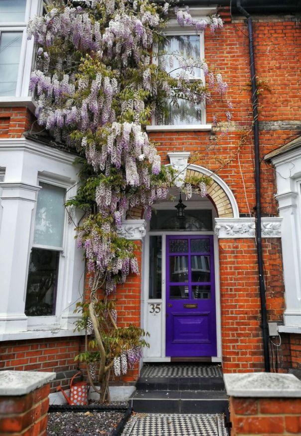 Wll (Wisteria Lane London)