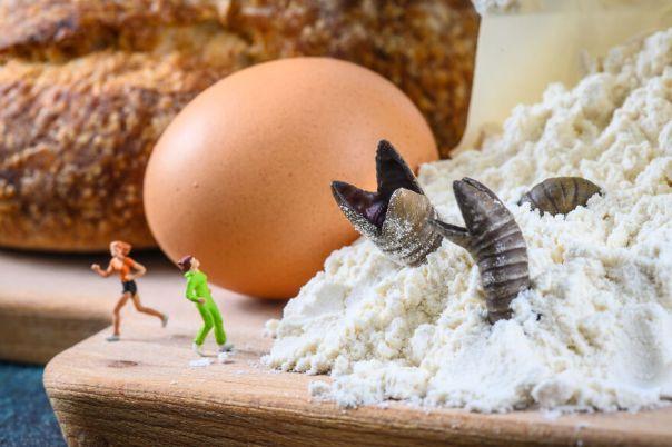 Flourworm