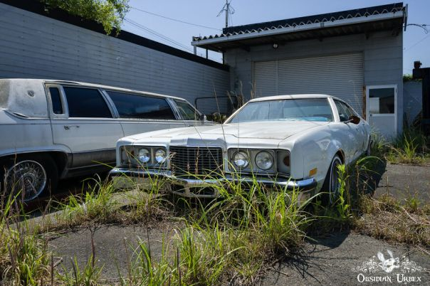 Tarmac Is Cracked And Weeds Grow Everywhere At This Abandoned Car Dealership