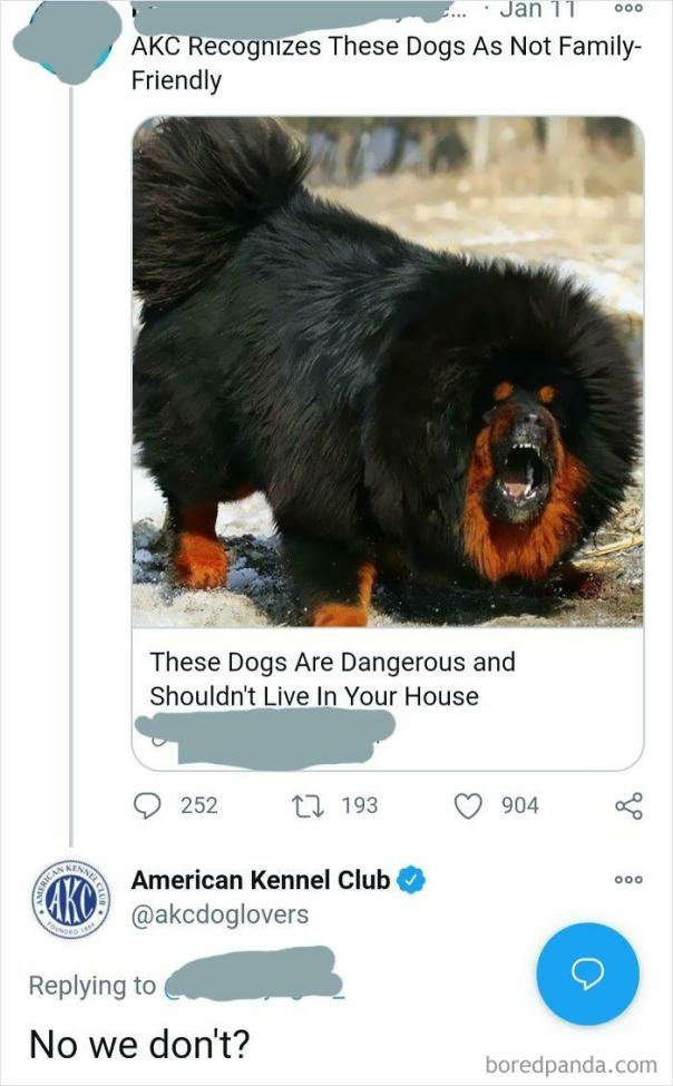 Akc Calls Out Clickbait Twitter Ad
