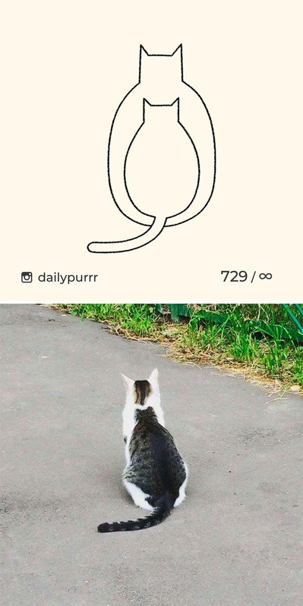 Stupid-Cat-Drawings-New-Dailypurrr