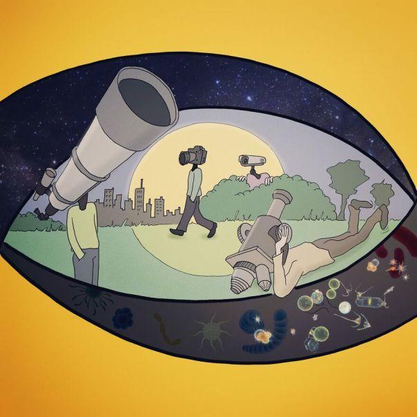 Between Micro And Macro Universe