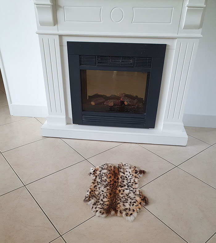 I Ordered A Rug For The Fireplace