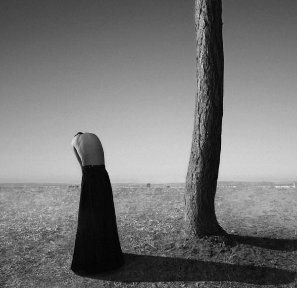 Noell S. Oszvald Photography