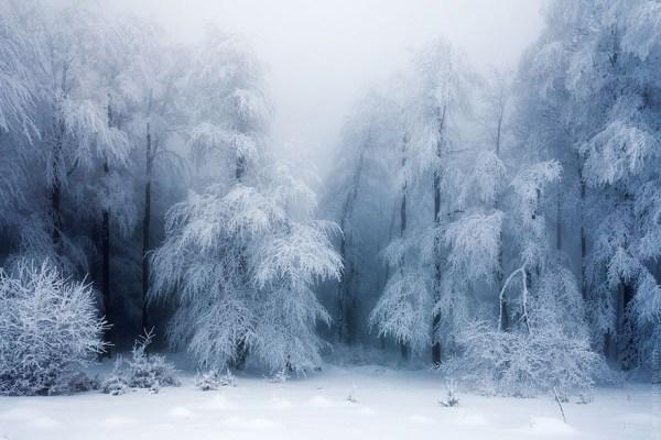 breathtaking of winter