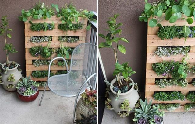 14 Idee Fai Da Te Per Creare Bellissimi Giardini Verticali Guida