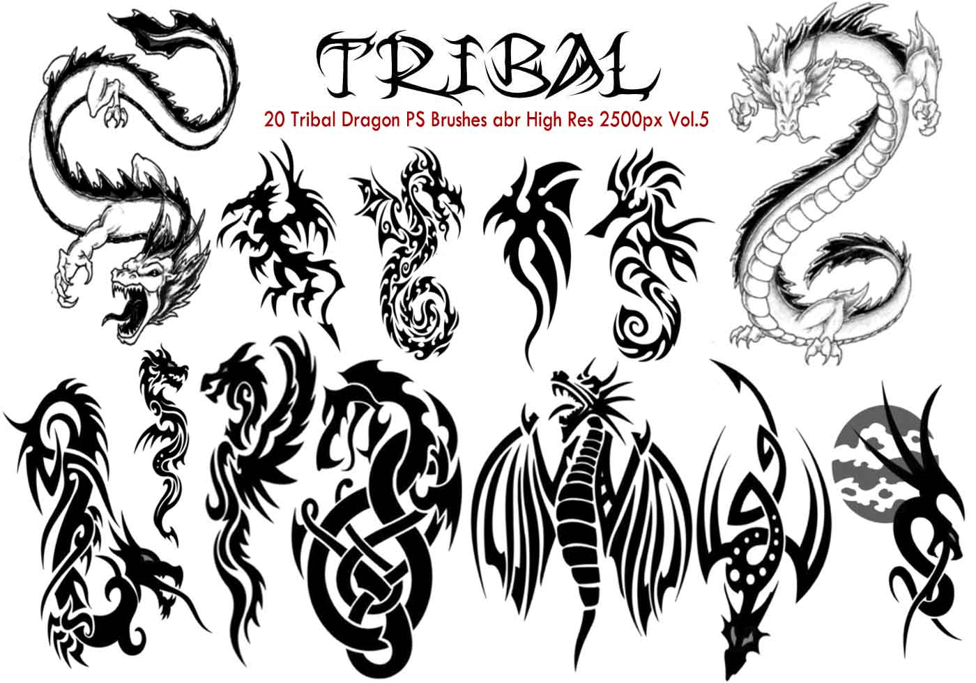 Adobe photoshop brushers tribal small : jackmoze