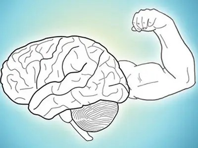 Image result for brain in hand smarter