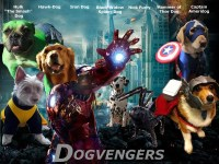 You Need To Check Out These Dogs Dressed In 'Avengers