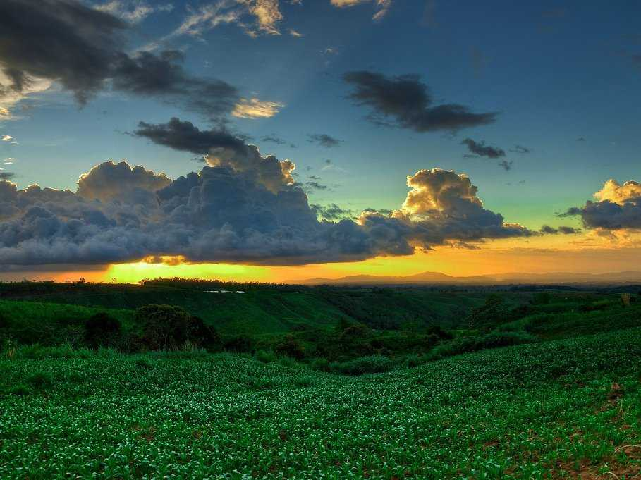 8. Philippines