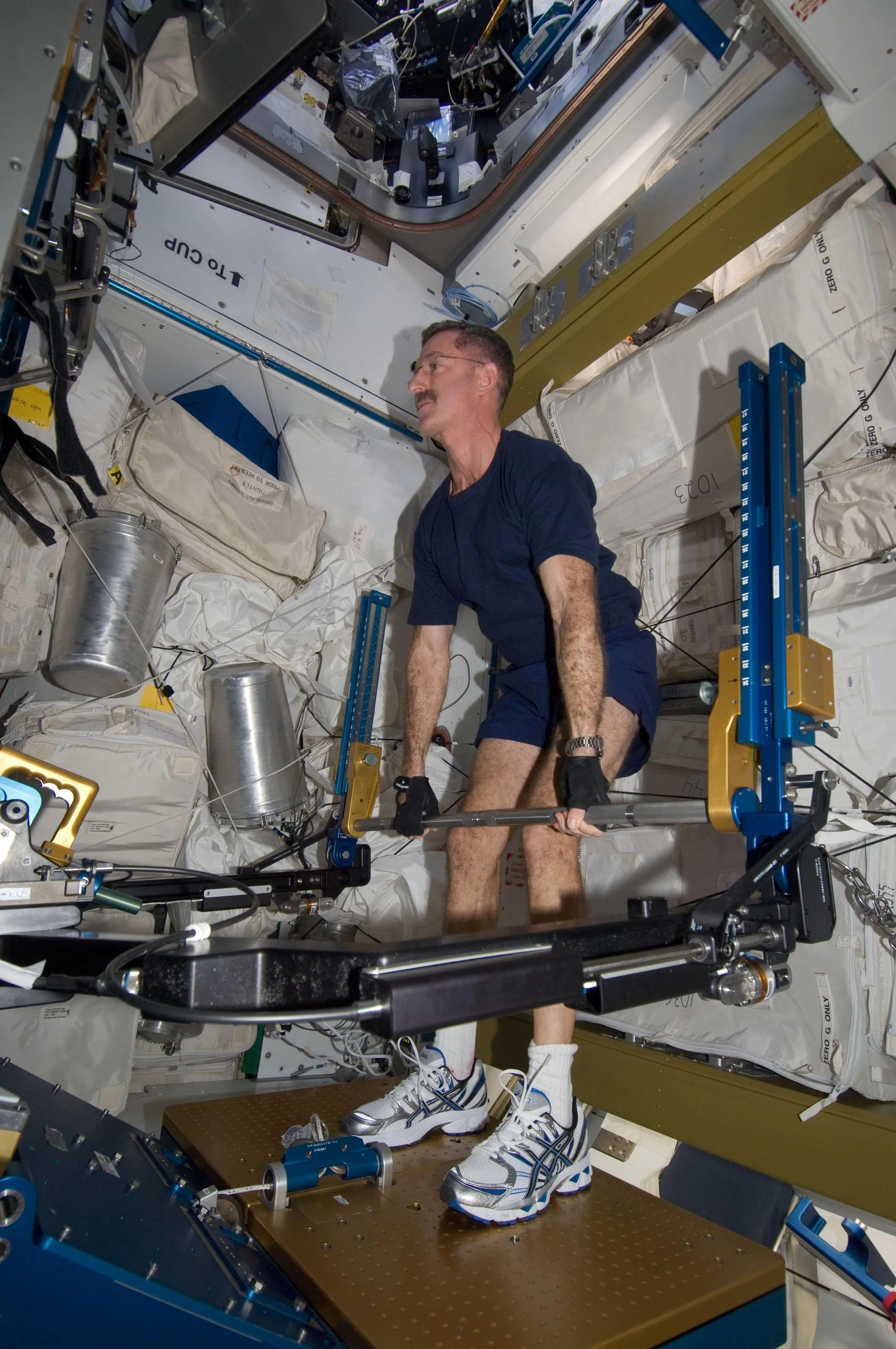 Astronaut Chris Hadfield How To Lift Weights While