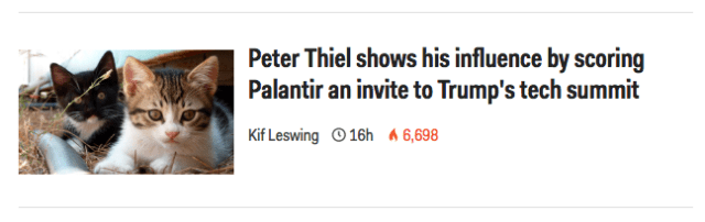 Peter Thiel in kitten form is truly adorable.