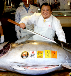 a fish in japan just sold for a record 3 million here s why bluefin tuna is so expensive [ 1964 x 1105 Pixel ]