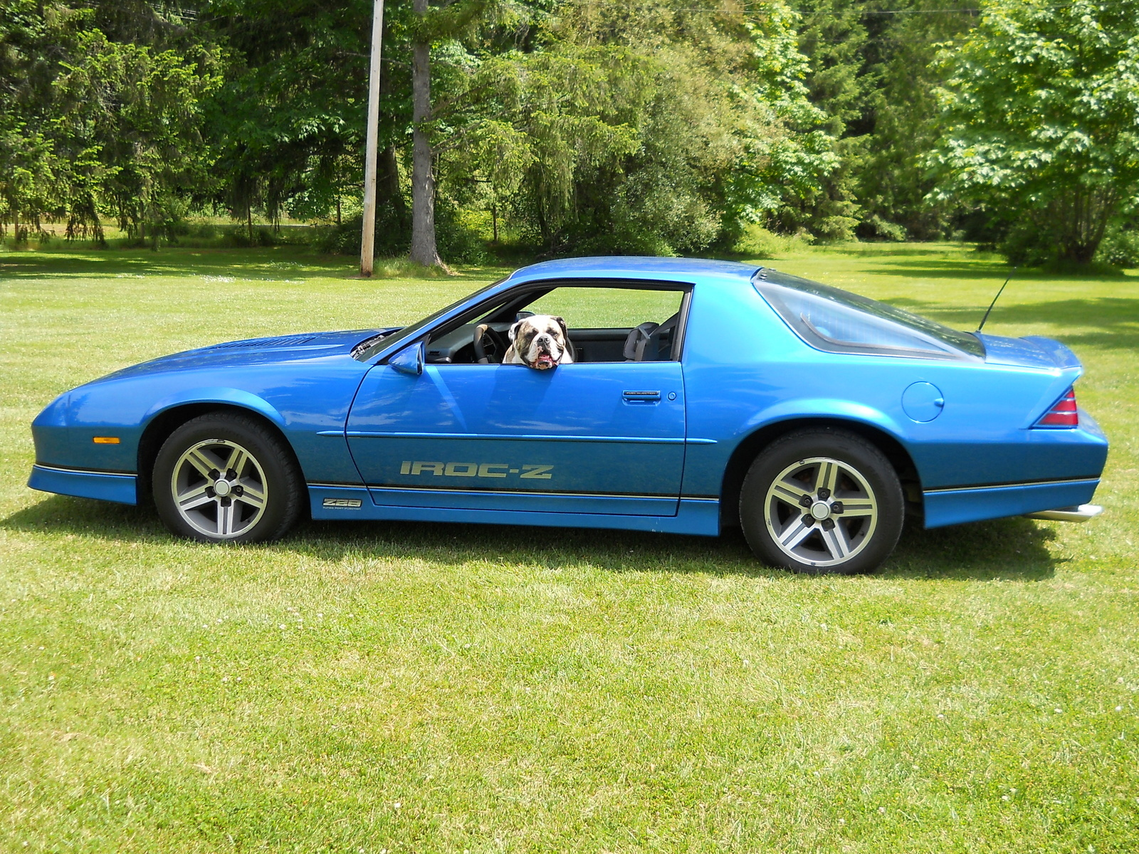hight resolution of chevrolet camaro questions how much is a 1985 iroc z worth with 110 miles on it cargurus