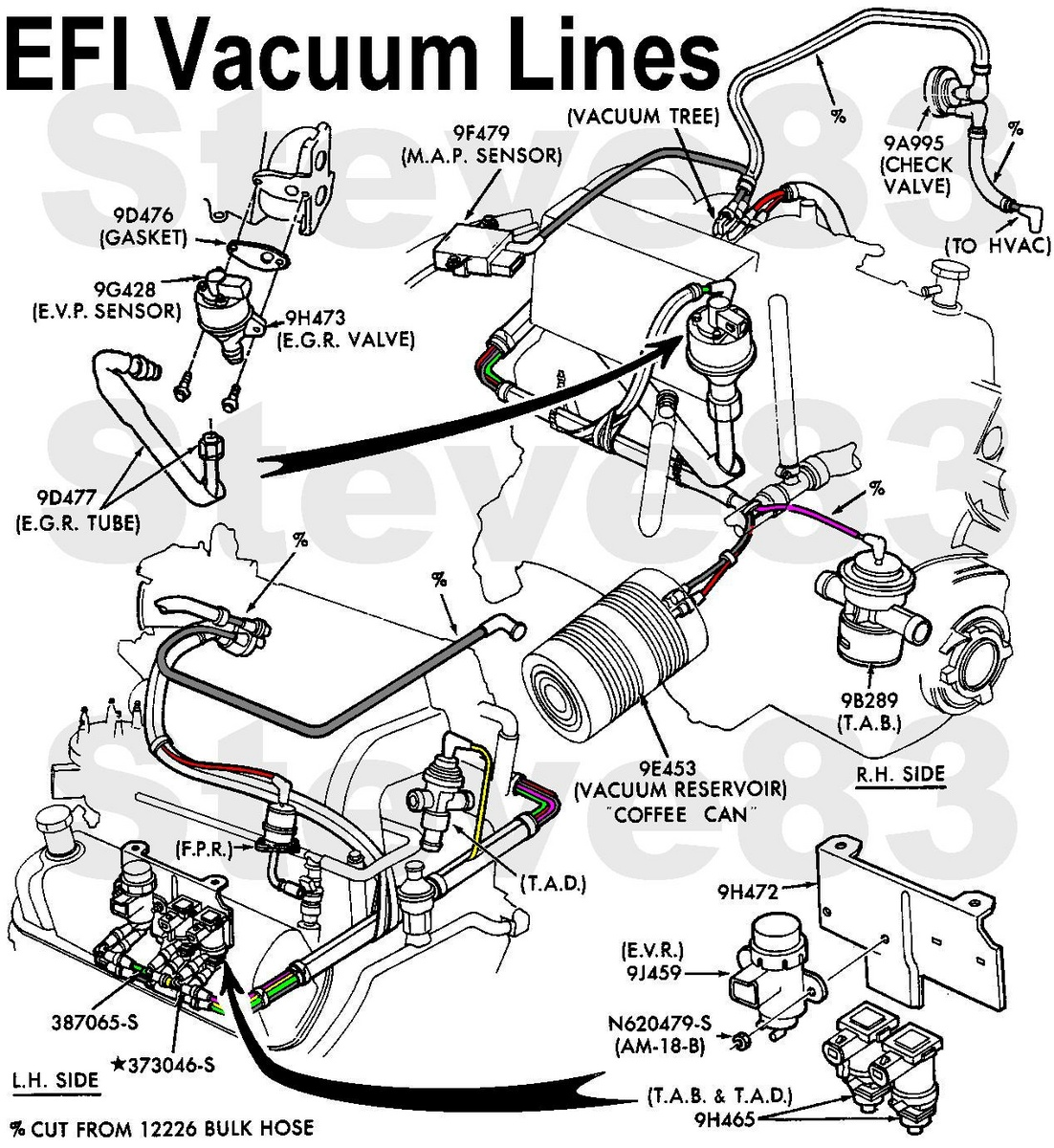 Ford F 150 Vacuum Line Diagram Free Engine
