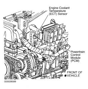 2008 Trailblazer Wiring Diagram. Diagram. Wiring Diagram