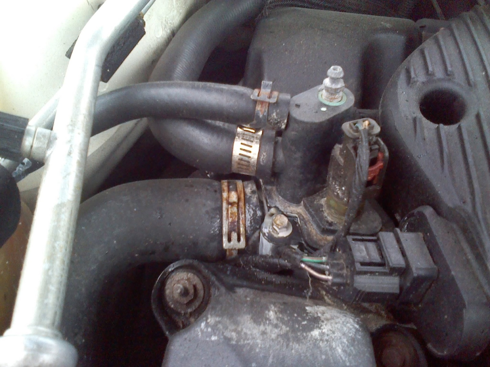 2000 ford focus thermostat diagram 1989 bass tracker pro 17 wiring heater core hose free