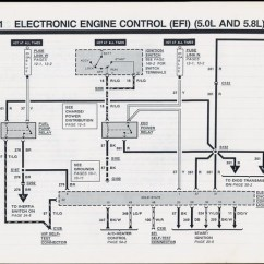 1999 Ford Mustang Fuel Pump Wiring Diagram Free Electrical Software 5 0 Engine Oil Looking Foneplanet De 62 Schwabenschamanen U2022 Rh