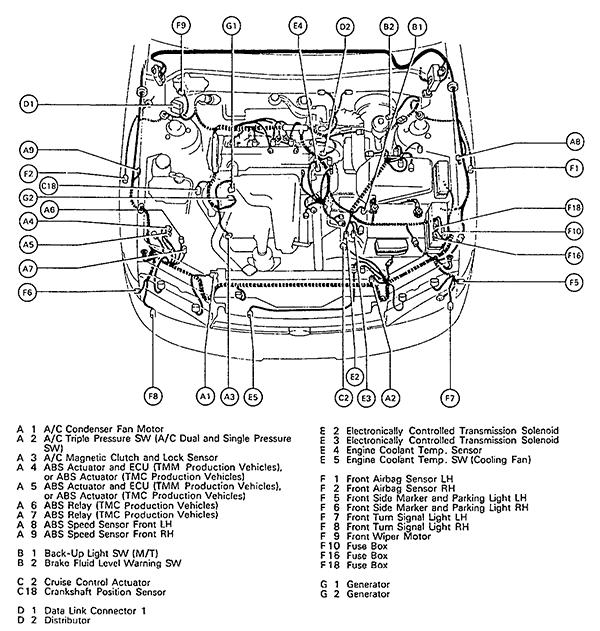 1996 Toyota Camry Wiring Harness 2004 Toyota Tundra Wiring