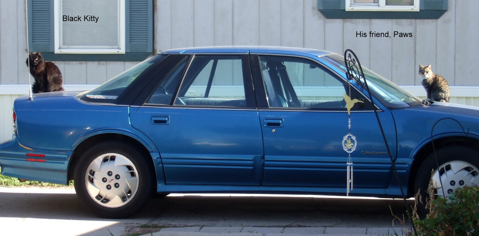 hight resolution of oldsmobile cutlass supreme questions car loses power while driving 1996 oldsmobile ciera blue 1996 oldsmobile ciera fuse box
