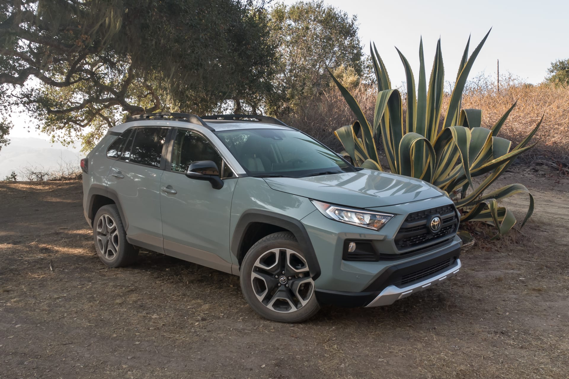 hight resolution of 19 toyota rav4 adventure 2019 angle blue