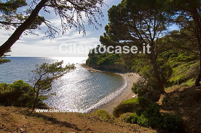Punta Licosa  Luoghi da visitare mete turistiche nel Cilento