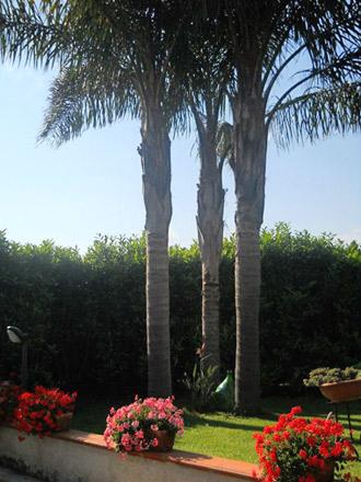 Casa Mirella a Santa Maria di Castellabate su Cilento Case
