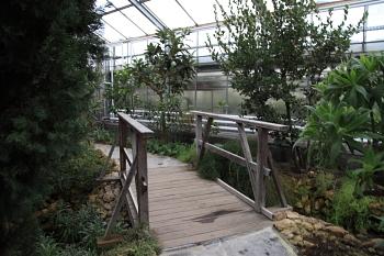 Freizeit Botanischer Garten Chemnitz
