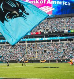 carolina panthers against the atlanta falcons at bank of american stadium on sunday november 5 [ 768 x 1152 Pixel ]