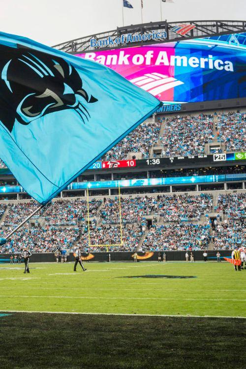 small resolution of carolina panthers against the atlanta falcons at bank of american stadium on sunday november 5