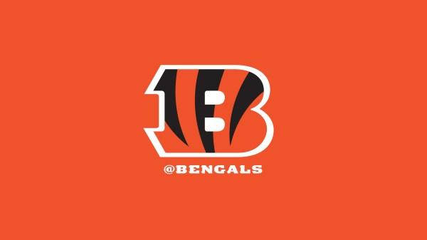 Cincinnati Bengals Fans 2018 Wallpaper Bengalscom