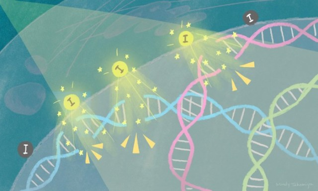 Nanoparticles-Break-DNA-Kill-Cancer-Cells-scaled.jpg