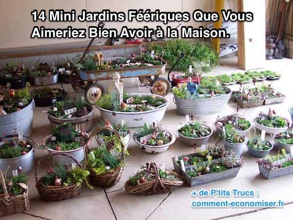 14 jardins miniatures qui vont vous