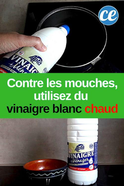 Comment Faire Fuir Les Mouches : comment, faire, mouches, Vinaigre, Blanc, Chaud, Répulsif, Efficace, Contre, Mouches.