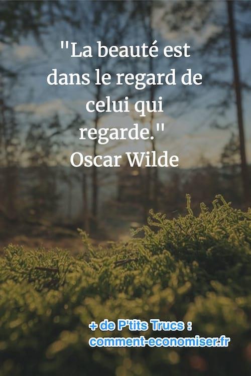 Citation Regarder Vers L Avenir : citation, regarder, avenir, Citations, Inspirantes, Changer, Votre