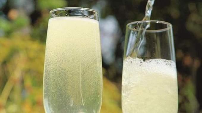 La Recette du Champagne Aux Fleurs de Sureau (Facile à Faire Et 100% Naturelle).